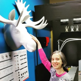 A Moose Head in Canadian PLA
